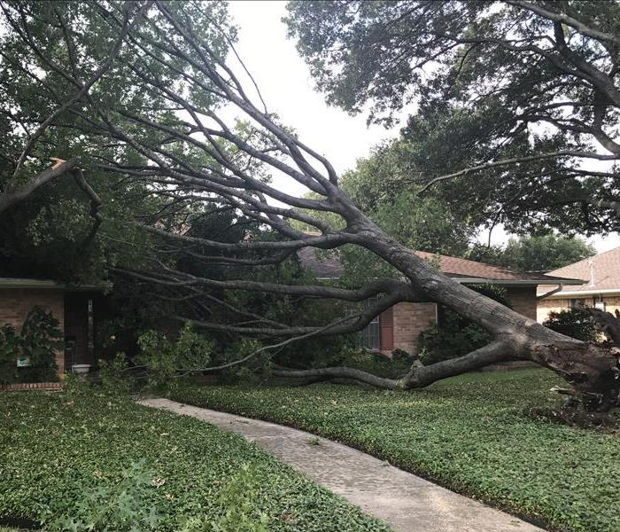 Tree Falls Onto Home Before
